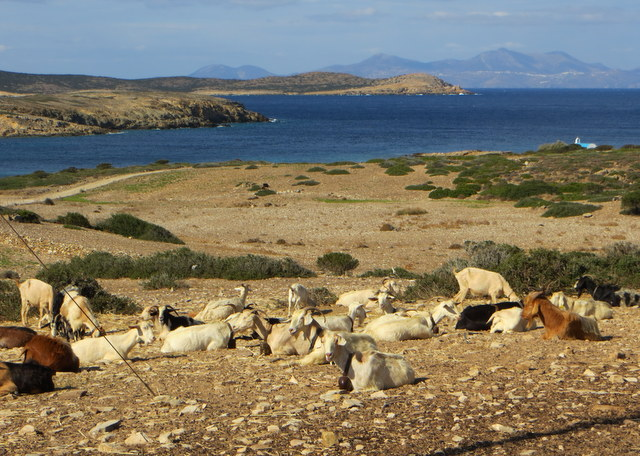 View from St. George, Antiparos towards Despotika Island where we are anchored