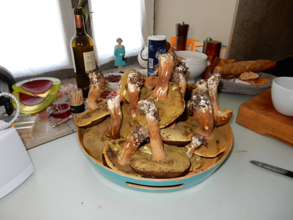 The cèpes (a tyupe of wild mushrom) were in season around Fongalop  (shown in Melinda's kitchen))