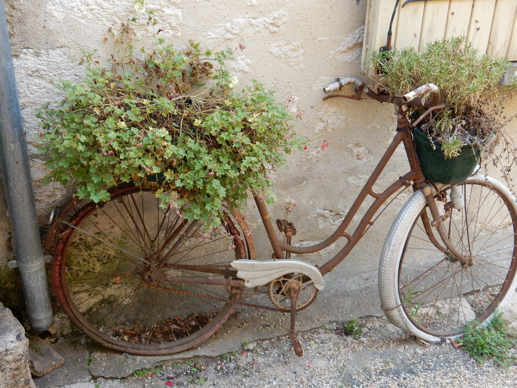 Bicycle transformed to a planted in Essegiac