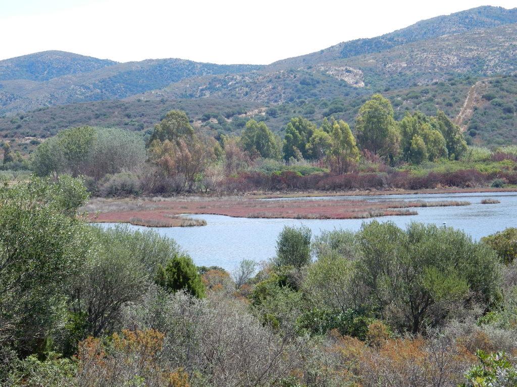 Marsh land at Malfatano